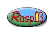 RASP 03